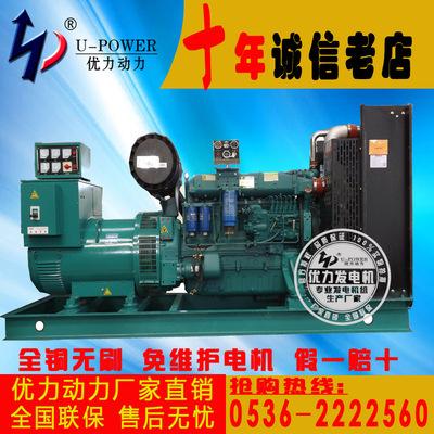 200kw柴油发电机组 潍坊全铜发电机组200千瓦 优力直销 全国联保