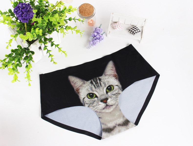 b2e824d79c 2019 Sexy Seamless 3d Underwear Women Briefs Cats Print Women Panties  Female Pink Underwear Panty Sexy Panties 11 Style With Retail Packaging From  ...