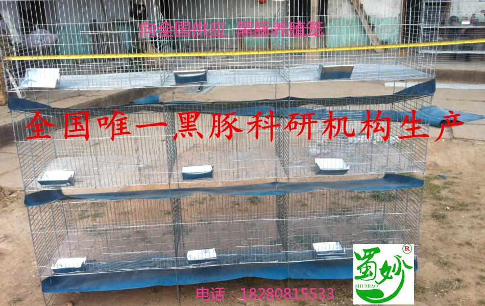 全国独家专利黑豚立体养殖笼