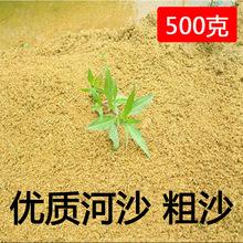 园艺沙土 河沙 黄沙 栽花种菜 仙人类专用沙土/鱼缸用 大量批发
