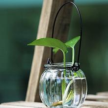水培植物透明玻璃花盆瓶 圓球玻璃花瓶 含定植籃 可養魚養花玻璃