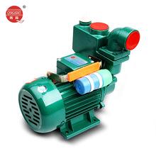 台州凌霄水泵家用自吸泵220V高扬程抽水机管道增循环压泵抽水泵