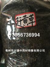 冷背中药材批发正品优质无硫 赶黄草  保证质量 可打粉