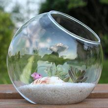 批发斜口微景观苔藓生态瓶  高透明多肉玻璃花瓶 DIY花瓶创意礼品