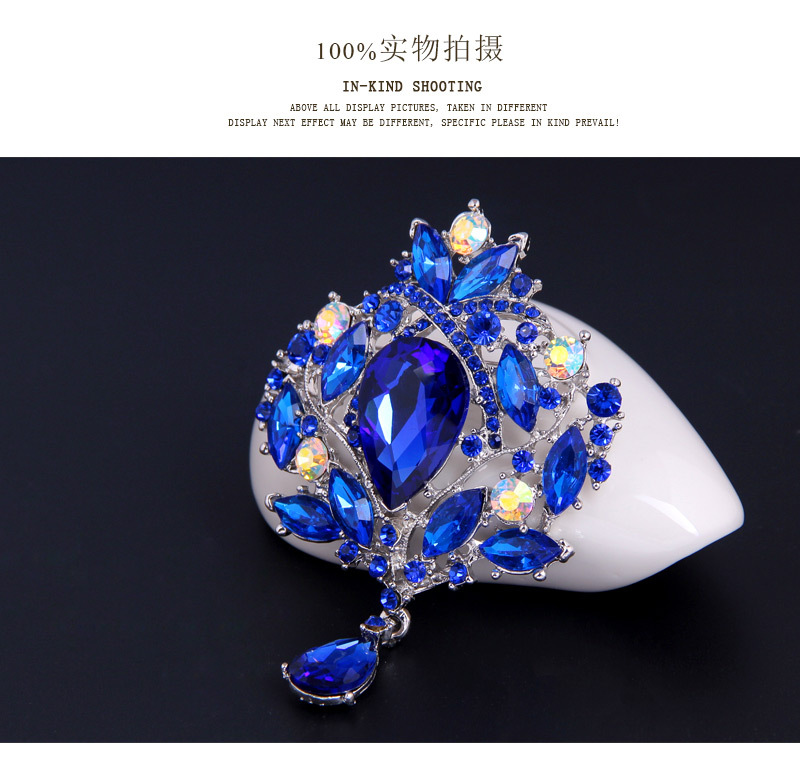 Occident alloy plating brooch NHDR0692
