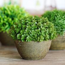 赫埠zakka 仿真植物小多肉植物盆栽 田园 礼品 摆件 仿真花