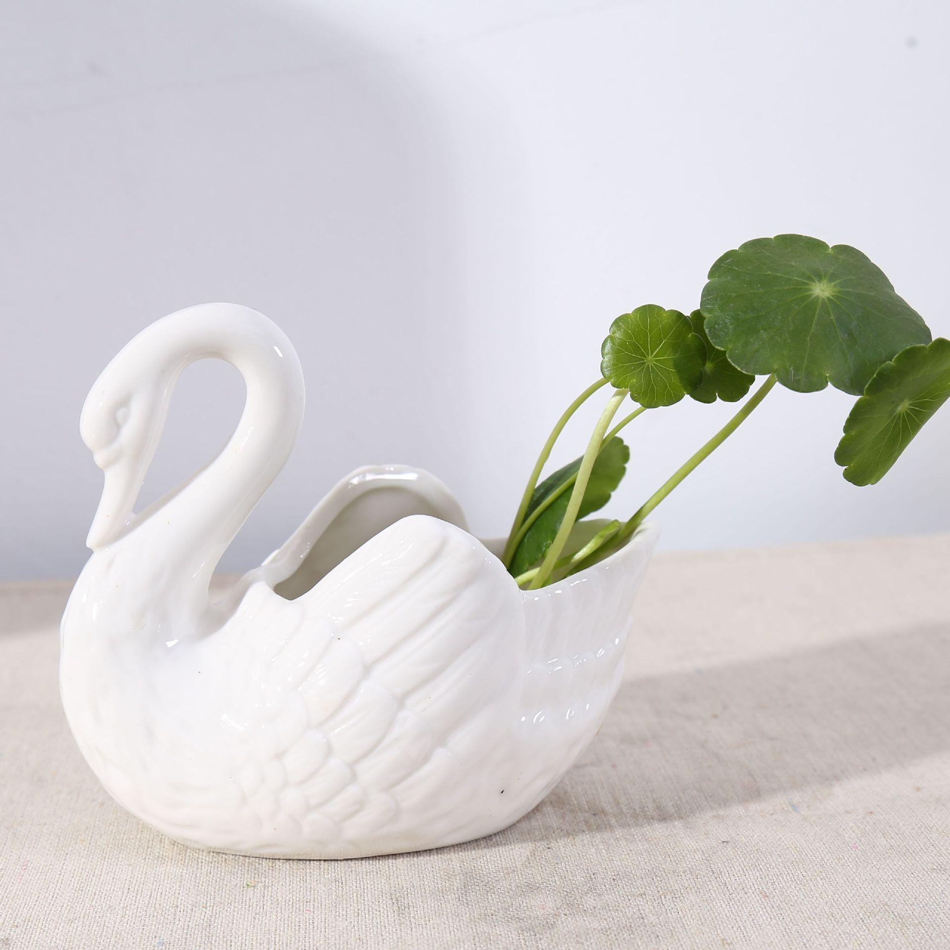 拍摄道具白色陶瓷天鹅烛台迷你花盆水培花器拍摄背景家居装饰摆件