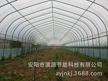 新一代超强度种植甘蓝菜大棚建设