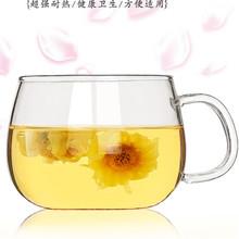 耐热玻璃茶杯加厚高硼硅玻璃咖啡杯圆趣杯厂家批发加工定制logo