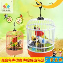 正品声控鸟笼 创意仿真电动感应小鸟广场热销玩具货源