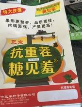 西瓜种子批发 大荔热销 品种优产量高  大田农作物水果种子