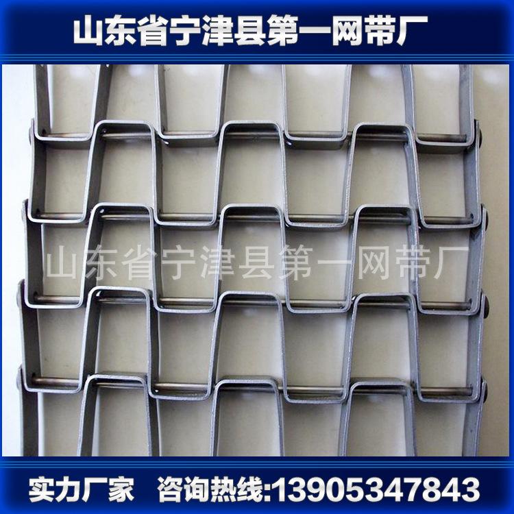 宁津厂家-供应网带-不锈钢网带-金属网带-马蹄链长城网带