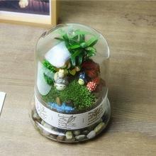 博雅微景观植物生态瓶 diy瓶子微景观玻璃罩 多肉景观仿真花容器