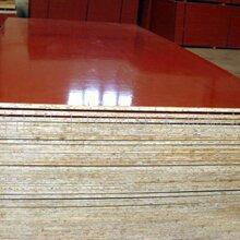 流化床干燥设备4E8-48225