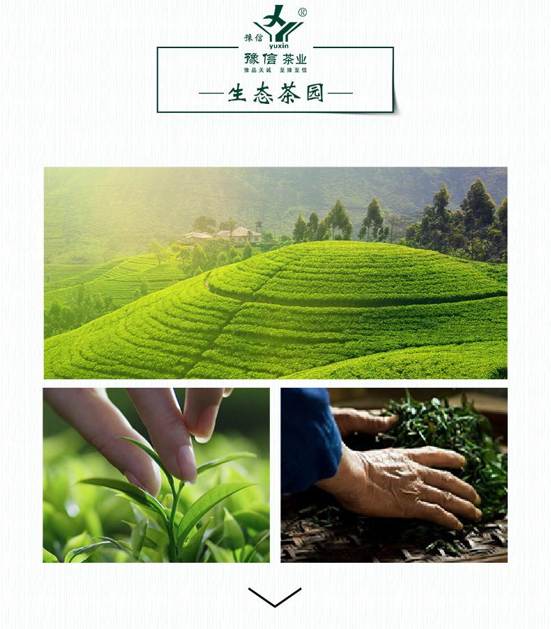 绿茶详情模版下京东_03