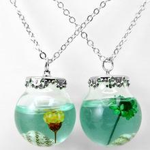 玻璃制品外贸永生花玻璃罩项链海螺工艺品跑江湖地摊货源热卖夏季