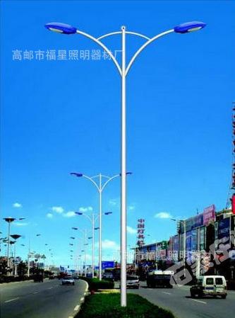 浙江省路灯销售 广场灯销售 路灯厂家直销  路灯杆支持定制