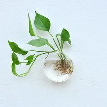 创意圆形壁挂水培花瓶简约酒店家居装饰鱼缸花盆墙面吊挂绿植花器