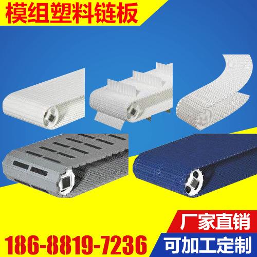 生产直销 塑料模组式输送网带  PE/NYLON塑料链板网带 塑料链板