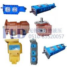 CBGJ3100/1025-XF,CBGJ3100/1020-XF双联高压油泵