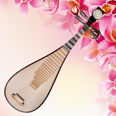 兰考桐韵琵琶花梨清水成人琵琶A42型琵琶乐器 优质原料打造特价