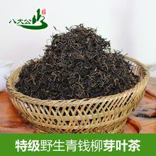 2018年野生青钱柳新茶厂家直销湖南特产金钱柳嫩芽茶保健茶养生茶