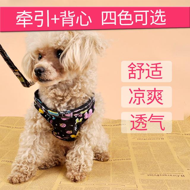 背心式宠物胸背带套装胸背衣狗狗牵引带中小型犬 代发批发 小号