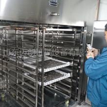 廠家生產海參烘干設備 冷風烘箱干燥機 低溫烘干機 海產品烘干房
