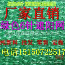 低价批发 6针加密全新料绿色遮阳网 农用遮阳网 防老化 防晒