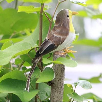 仿真羽毛鸟 工艺鸟 天然羽毛 仿真麻雀小鸟 供应旅游纪念品