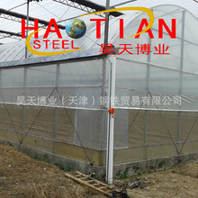 批发 五常 水稻大棚 温室大棚 人参大棚管加工  厂家直销