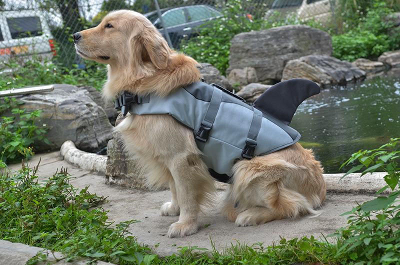how to make a dog life jacket