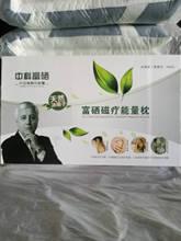 決明子磁療枕頭 能量枕芯 會銷禮品養身保健枕 人壽老人頭贈品
