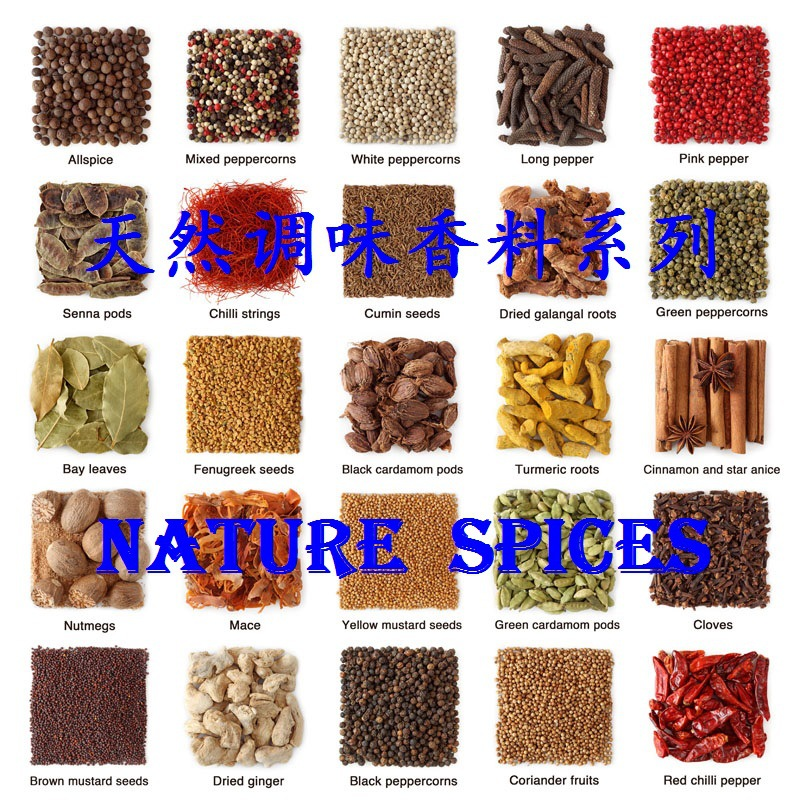天然調味香料系列 SPICES & HERBS