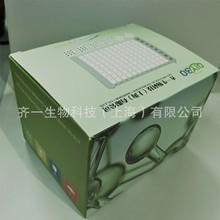 小鼠超氧化物歧化酶(SOD)检测试剂盒
