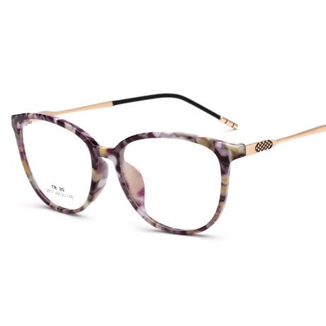 Oleo 2617 retro siêu nhẹ tr90 kính khung đầy đủ gói hoa nam và nữ sinh viên kính khung kim loại