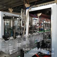 直销牛奶灌装机 白酒灌装设备 果汁灌装机 直线式