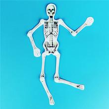 DIY人体骨骼模型儿童幼儿创意制作学具益智玩具拼装科学探索教具