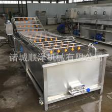 顺泽机械厂家生产销售包菜气泡清洗机 大型大头菜清洗加工设备
