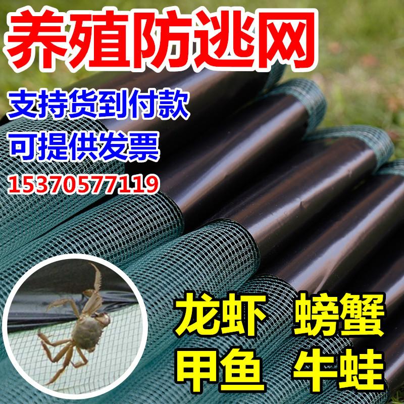 小龙虾防逃网 青蛙围网 螃蟹防逃网 网箱 塑料围板专用养殖网箱