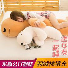 厂家直销极软毛绒玩具水豚抱枕公仔羽绒棉靠垫长条抱枕女一件代发