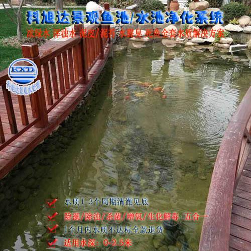 科旭达锦鲤鱼池过滤系统广西百色别墅鱼池过滤水清澈洁净免费设计