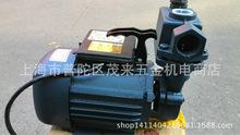 上海供應DBZ1100W家用清水泵 自吸泵/增壓泵/清水泵 清水抽水泵
