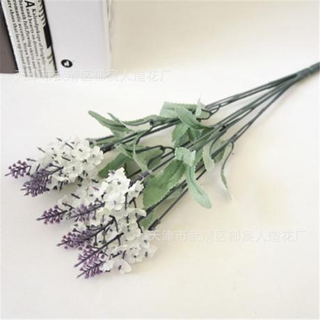 10 hoa oải hương chụp đạo cụ đồ đạc trong nhà Provence chụp ảnh bó hoa oải hương tím