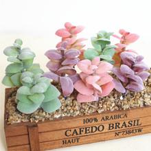 仿真多肉植物厂家直销豆莲 热带植物DIY用品配件植物墙 仿真花