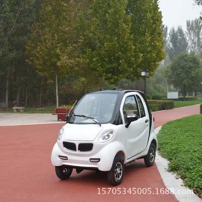 成人电动车家用电动汽车四轮轿车油电两用纯电动燃油代步新款