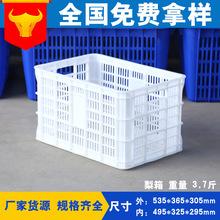 现货供应泽鹏3.7斤方形白色塑料梨箱 水果蔬菜筐镂空运输周转筐
