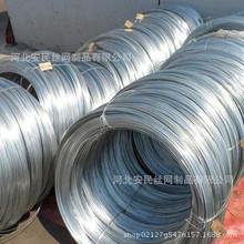 安民厂家供应 电镀锌钢丝 热镀锌钢丝直径1.4mm-3.8mm镀锌钢丝