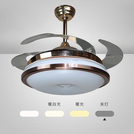 Đèn quạt trần hiện đại RLQ  6698
