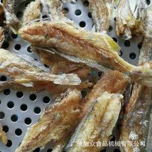 大型鱼仔加工设备 厦门鱼虾油炸加工设备 果蔬脆片加要机械